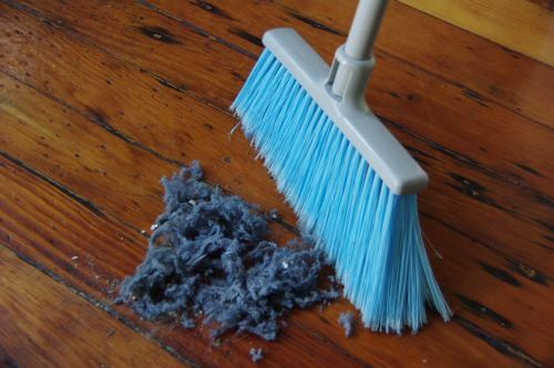 moving cleaning service springfield